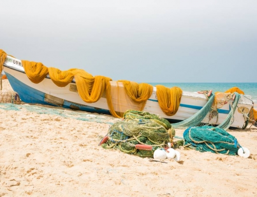 The complete country guide to travel Sri Lanka