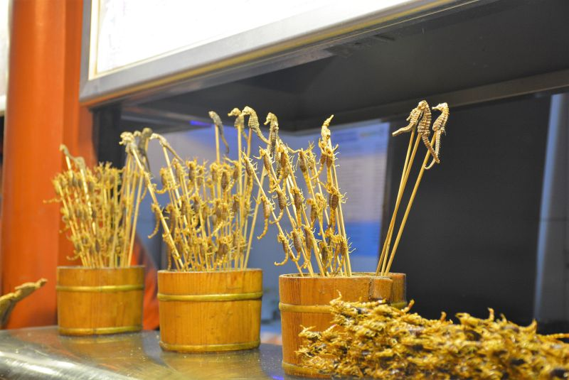 beijing night market exotic food