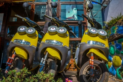 china dali ebike minion