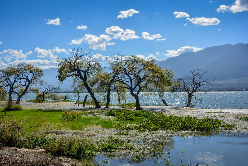 dali erha lake nature
