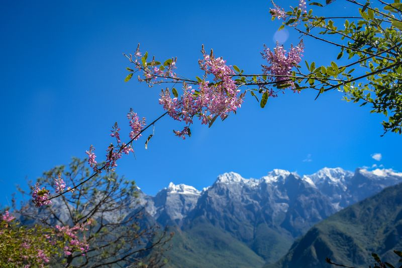 china lijiang tiger leaping gorge mountain view