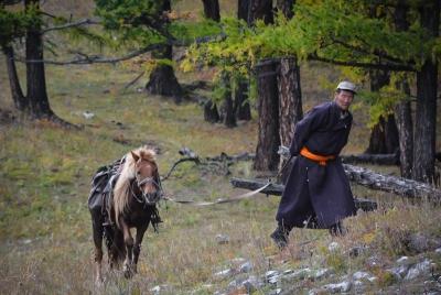 mongolia khovsgol man horse