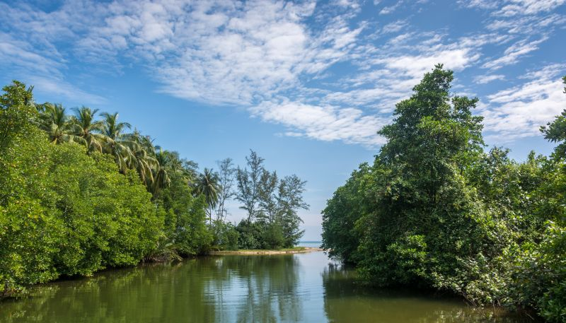 sihanoukville cambodia ream national park river