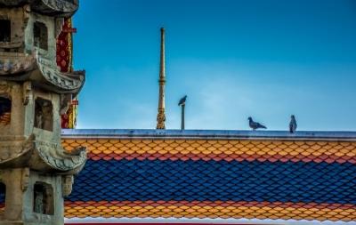 bangkok thailand wat pho roof