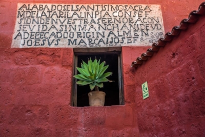 window and plant monasterio arequipa peru