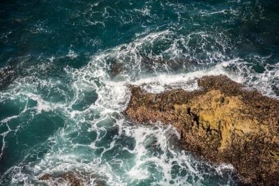 australia eagle buff sea view