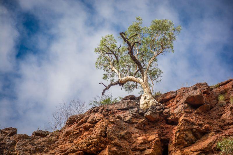 australia karijini hammersley gorge