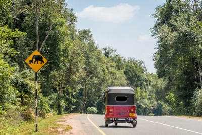 elephant sign road trincomalee