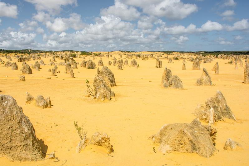 western australia pinnacles limestone